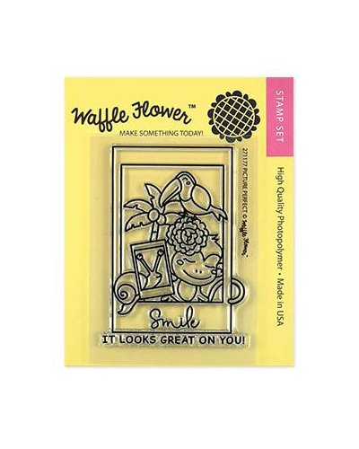 Sello Waffle-Flower Picture Perfect