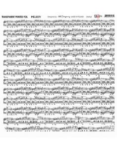 acetato melody de 13arts