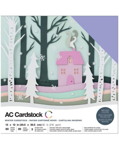 "Cardstock precision winter 12""X12"""