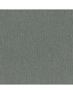 Cartulina Tungsten Perlada texturizada de Bazzil