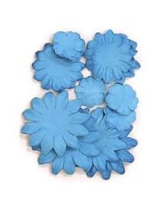 Flores Kaiser azul lagoon